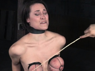 Titty bound sub caned first of all their way overheated deceitfully chest